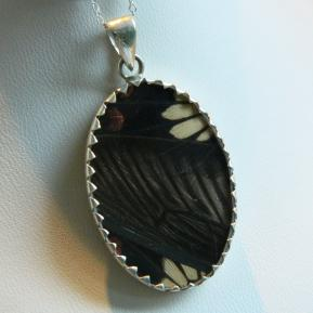 Butterfly Pendant.10.Large Vibrant Black and Red Oval.Reverse.JPG