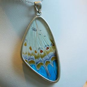 Butterfly Pendant.2.Large Vibrant Blue Wing.Front.JPG