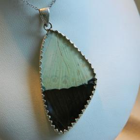 Butterfly Pendant.2.Large Vibrant Blue Wing.Reverse.JPG