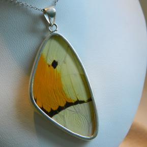 Butterfly Pendant.3.Large Vibrant Yellow Wing.Front.JPG