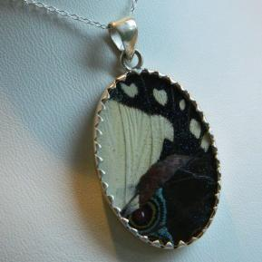 Butterfly Pendant.9.Large Vibrant White and Blue Oval.Reverse.JPG
